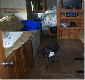 camping trip number one 6-3-2011 014