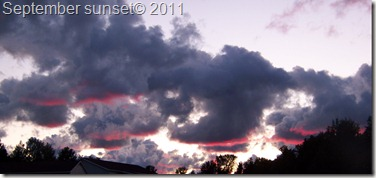 sept 2011 stuff 004