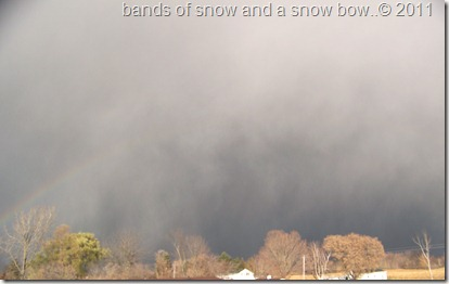 snow storm coming in 11-11-2011 012