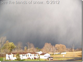 snow storm coming in 11-11-2011 008