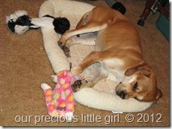 RIley 7-19-2012 003